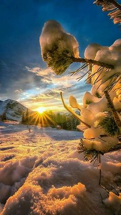 beautiful sunset and sunrise in winter Beautiful World, Beautiful Places, Beautiful Pictures, Natur Wallpaper, Landscape Photography, Nature Photography, Winter Scenery, Winter Sunset, Winter Wonder