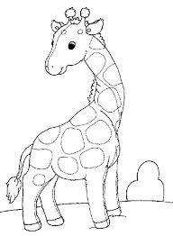 image result for giraffe outline drawings for kids - Outline Drawing For Kids