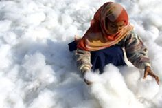 This photograph was taken during the winter season when quilt making is at its peak in India. Women, mostly from rural areas, come to the cities to beat cotton out under the sun and use it to fill quilts. Financial Inclusion, Rural Area, Winter Season, Quilt Making, Photo Contest, My Dream, Folk, Winter Jackets, Seasons