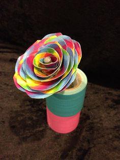 Rainbow Rose.