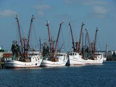 Port Aransas area
