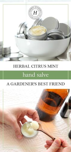 Herbal Citrus Mint Hand Salve: A Gardener's Best Friend   Herbal Academy   This herbal citrus mint hand salve will not only moisturize your gardening hands, it will soothe insect bites, scrapes, and cuts!