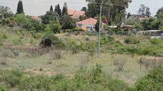 כיצד יש למכור במקצועיות מגרש/קרקע להשקעה או בניה בישראל ?! טל' 050-5746326 Luxury Real Estate, Israel