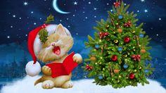 fondo de pantalla de gato en navidad