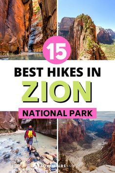 If you're headed to Utah, check out our round up of best hikes in Zion National Park. There's truly something for everyone here!