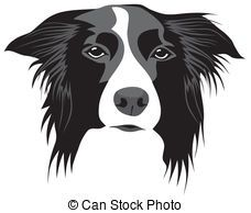 Collie Illustrations and Clipart. 456 Collie royalty free illustrations, and drawings available to search from thousands of stock vector EPS clip art graphic designers.
