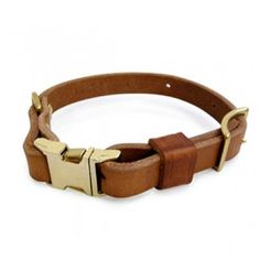 Olive - Bold Designs Collar and Lead Set - Collars for Dogs
