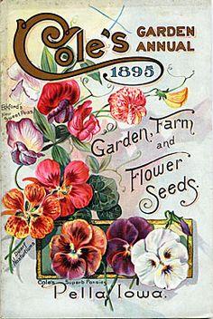 Cole's Garden Annual 1895 Garden, Farm And Flower Seeds   c.1895