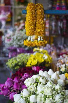 Flores, Tailândia www.calçathai.com