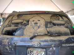 Dirty car art!  Artist is so talented.  I'm amazed at even the idea of thinking up something like this!!