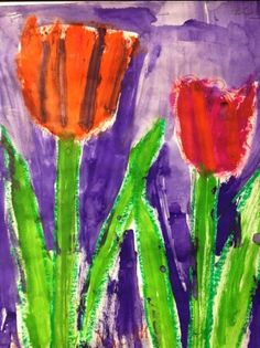 Tulips drawn with oil pastels in a guided lesson, painted with cake tempera, kindergarteners