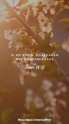 I Love You God, God Loves You, God Is Good, Gods Love, Powerful Bible Verses, Encouraging Bible Verses, Biblical Verses, Jesus Is Life, God Jesus