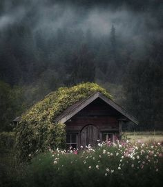 Land Wallpapers ☘︎ Landscape Photography, Nature Photography, Photography Tips, Travel Photography, Beautiful Homes, Beautiful Places, Amazing Places, Wonderful Places, Beautiful Flowers