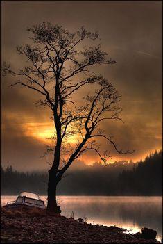 llbwwb:  Loch Ard misty sunrise   Flickr - Photo Sharing!)
