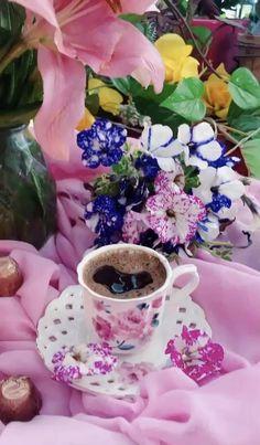 Beautiful Nature Scenes, Beautiful Gif, Beautiful Morning, Beautiful Moments, Amazing Nature, Beautiful Landscapes, Beautiful Flowers Pictures, Beautiful Rose Flowers, Flower Pictures