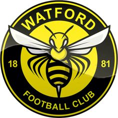 Watford FC Arsenal Football, Football Soccer, Skull Wallpaper Iphone, Premier League Logo, Der Club, Watford Fc, Eminem Photos, British Football, Football Design