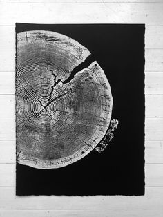 crater lake oregon Real tree ring art pressed by hand and signed by artist, Erik Linton. This piece of wood is from a Red Fir Tree just South of the Crater Lake National Park from a Large Art Prints, Large Wall Art, Oregon Trees, Crater Lake Oregon, Woodcut Art, Tree Slices, Tree Rings, Autumn Trees, Christmas Art