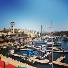 One of our favorite places in Cabo San Lucas #Mexico is the marina, it's a great place to hop on a fishing charter boat, a sunset cruise, grab an evening cocktail, go shopping or just stroll and people watch. #CaboSanLucas #Mexico #Cabo #LosCabos #vacation #marina #fishing #yachting