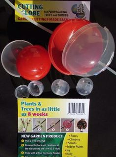 Cutting Globes - Variety Pack Trees And Shrubs, Trees To Plant, Propagation, Cuttings, New Roots, Thing 1, Peat Moss, Free Plants, Indoor Plants