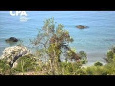 Sea front land for sale in Agios Gordios, central Corfu-CPA 3657 Agios Gordios, Corfu Island, Corfu Greece, Land For Sale, Sea, Painting, Painting Art, Ocean, Paint
