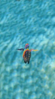 Baby Animals Pictures, Cute Animal Photos, Animals And Pets, Wild Animals, Tier Wallpaper, Animal Wallpaper, Sea Turtle Wallpaper, Cartoon Wallpaper, Ocean Creatures