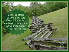 Don't be afraid to take a big step if one is indicated.  You can't cross a chasm in two small jumps.  -- David Lloyd George
