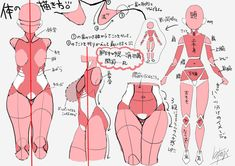 how to draw, body, original / 個人的な身体の描き方まとめ! - pixiv Drawing Female Body, Body Reference Drawing, Drawing Reference Poses, Anatomy Reference, Drawing Poses, Figure Drawing, Drawing Tips, Hand Reference, Drawing Hair