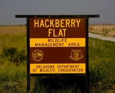 Make your way to Hackberry Flat, a wetland habitat in southwestern Oklahoma, for bird watching and wildlife photography, or stop at the Sequoyah Refuge for a six-mile auto tour through wetlands and meadows.