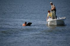 The Manliest Man Ever Rescues A Bear From Drowning