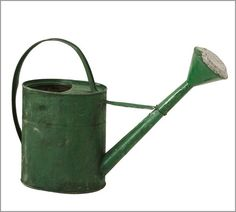 The watering can looks old and worn this helps add detail to the picture. The dark green watering can stands out from the white background.