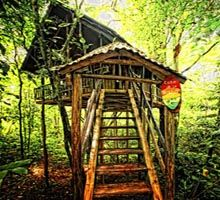 Tree Houses Hotel - Lesbian owned Hotel in Costa Rica.  This is a must do... added to the bucket list....
