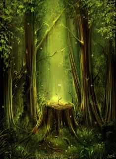 magical forest  jerry8448 deviant art