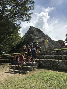Mayan Ruins at Chacchoben, Costa Maya, Mexico I've always wanted to climb a Mayan ruin and to do it before I got too old, Costa Maya, Mayan Ruins, American Country, Latin America, Climbing, Mexico, Vacation, Mountains, History