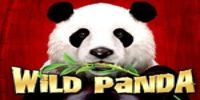 Enjoy this beautiful natured themed slot from Aristocrat - Wild Panda. Find out everything you ever wanted to know about the slot at Best Slots Games. Panda Online, Wild Panda, Free Casino Slot Games, Pop Up Ads, Play S, Free Fun, Slot Machine, Panda Bear, Animals