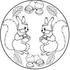 Eichhörnchen 011 Kostenlose Malvorlagen Und Ausmalbilder Auf Www