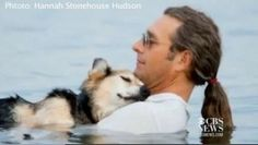 man takes his arthritic dog swimming in the ocean everyday to relieve his pain...  how can you not say..awwww.     Postscript: I am sorry to say that the dog pictured here, Schoep, has passed away. This picture will always make me happy every time I see it.