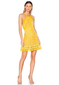 Shop for aijek Marianna Halter Dress in Yellow at REVOLVE. Free day shipping and returns, 30 day price match guarantee. Ladylike Style, Rehearsal Dress, Yellow Dress, White Dress, Fashion Lookbook, Revolve Clothing, Lace Dress, Mini Skirts, Summer Dresses