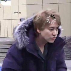 Meme Faces, Funny Faces, Super Junior Funny, Cho Kyuhyun, Leeteuk, Kpop, Different Zodiac Signs, Boyfriend Material, Pop Group