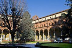Le 10 migliori università italiane: a Verona lateneo pubblico più quotato. Fra i privati vince la Bocconi di Milano (FOTO)
