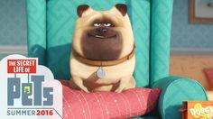 The Secret Life of Pets - Meet Mel (HD) - Illumination