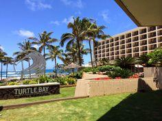 Turtle Bay Resort, North shore, Hawaii Turtle Bay Resort, Aloha Hawaii, North Shore, Spaces, Plants, Plant, Planets