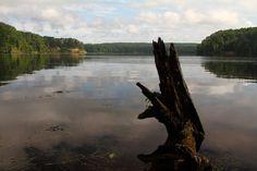 Tippy Dam Pond   #puremichigan