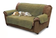 FurHaven Home Furniture Protector Quilted Microfiber Suede Slip Cover for Children Pets Dog or Cat fits Sofa/Couch Loveseat or Chair Sage