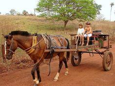 Pá deixou nois dá uma vortinha de carroça e vortar pro nosso ranchinho Country Charm, Country Life, Country Living, Pets 3, Farms Living, House Landscape, Horse Drawn, Jungle Animals, Holiday Destinations