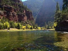 The Green River, Utah's most famous fly fishing water