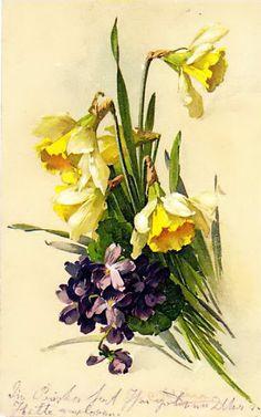 prettys flowers