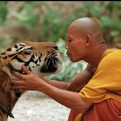 """""""If a person does not harm any living being and does not kill or cause others to kill-- that person is a true spiritual practitioner."""" --Siddartha Gautama"""
