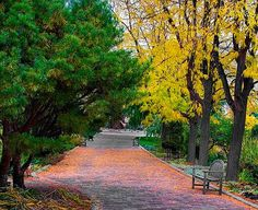 Things To Do In Boise - The Idaho Botanical Garden is located in the Historic District of the Old State Penitentiary. The Garden is dedicated to instilling intellectual curiosity and a genuine love of nature. It makes for the perfect escape into a world of natural beauty and refreshing atmosphere. #botanical_garden #boise #attractions #historictdistrictboise #garden
