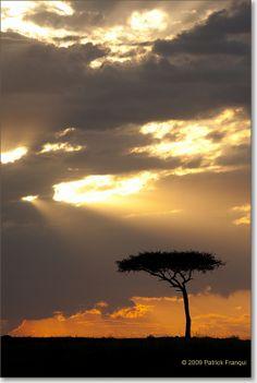 Masai Mara part 3 : typische keniaanse landschappen