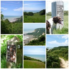 Hastings Country Park has some stunning views across the sea. A fantastic place to wear out children and dogs!